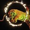 Цирки в Большом Нагаткино